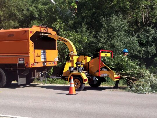 Commercial Tree Services-Seffner FL Tree Trimming and Stump Grinding Services-We Offer Tree Trimming Services, Tree Removal, Tree Pruning, Tree Cutting, Residential and Commercial Tree Trimming Services, Storm Damage, Emergency Tree Removal, Land Clearing, Tree Companies, Tree Care Service, Stump Grinding, and we're the Best Tree Trimming Company Near You Guaranteed!